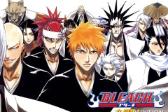 top-large_bleach
